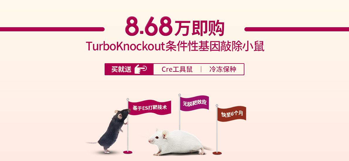 8.68万即购TurboKnockout条件性基因敲除小鼠