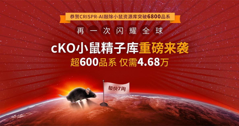 cKO小鼠精子库重磅来袭,超600品系 仅需4.68万