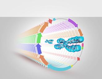 细胞生物学完整解决方案