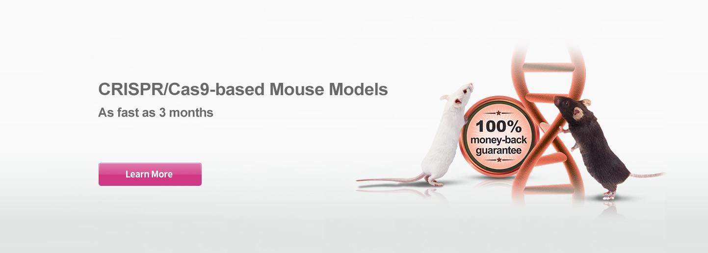 Custom Mouse Models cKO | KO | KI | Point mutation