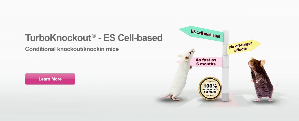 cKO/CKI Mice TurboKnockoutt® - ES cell based