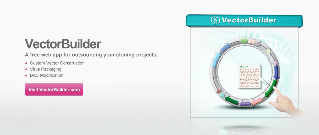 VectorBuilder-custom vector construction